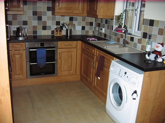 Room to rent in Great Yarmouth - Single room to rent with use of own bathroom - Image 1