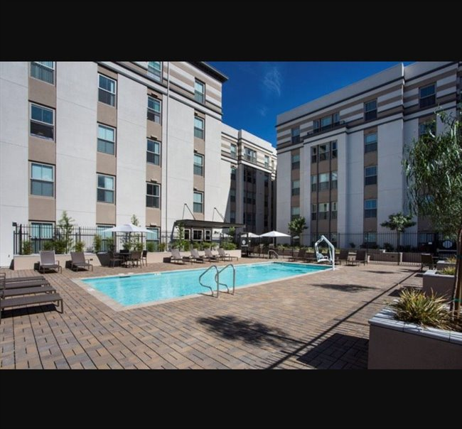 Room for rent in sun an 895 room for rent in downtown san jose for Cheap one bedroom apartments in san jose ca