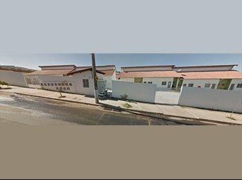 EasyQuarto BR - Suíte em Hortolândia (RMC), Campinas - R$ 600 Por mês