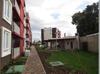 CompartoDepto CL - arriendo pieza en dpto cercano a clínica chillan, Chillán - CH$ 200.000 por mes