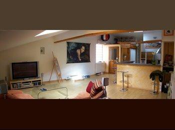 Appartager FR - Grand Loft meublé à louer sur vieux  Blagnac, Blagnac - 480 € /Mois