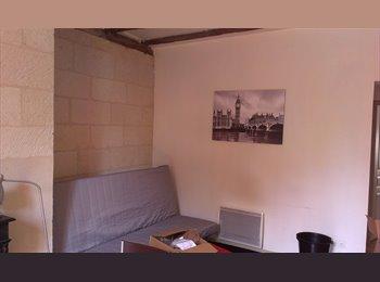 Appartager FR - Quartier HALLES Courteline Colocation meublées, Tours - 420 € /Mois