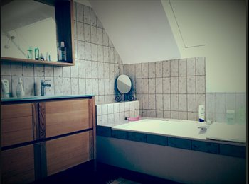 Appartager FR - Grande maison à 25min de Paris, Orly, Massy, Evry, Orsay, Saclay, Palaiseau - 500 € /Mois