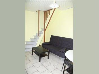 Appartager FR - loue triplex en centre ville en excellent état, Grenoble - 1200 € /Mois