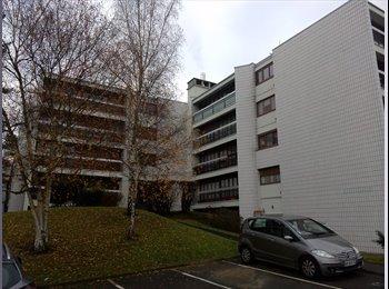 Appartager FR - Chambre à louer en colocation, Villebon-sur-Yvette - 600 € /Mois