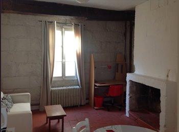 Appartager FR - Studio meublé plein centre de Tours, Tours - 450 € /Mois