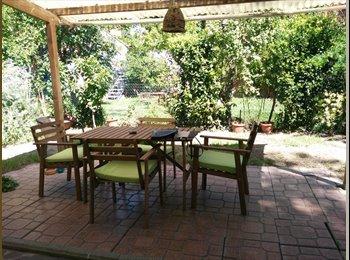 EasyStanza IT -  Casetta giardino privato centro storico sì animali, Pisa - € 300 al mese