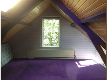 EasyKamer NL - Rooms for rent in Rotterdam NOrth, Rotterdam - € 1.750 p.m.