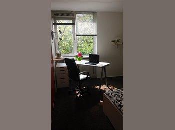 EasyKamer NL - ruimte voor gezellige rustige huisgenoot, Delft - € 485 p.m.