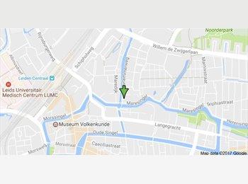 EasyKamer NL - Kamer beschikbaar, Leiden - € 500 p.m.