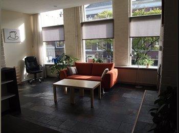 EasyKamer NL - Prachtig appartement met grote ramen, dichtbij centrum Delft, Delft - € 960 p.m.