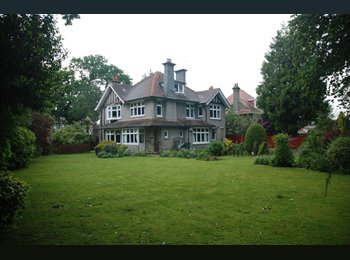 EasyRoommate UK - Talbot Woods: Executive Ground floor dble furnished room, Winton - £635 pcm