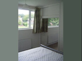 EasyRoommate UK - Sunny Double Room nr. Maylands, Hemel, Hemel Hempstead - £425 pcm