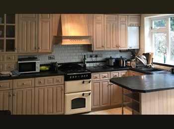 EasyRoommate UK - Chelmsford - new house share 5 mins from station, Chelmsford - £490 pcm