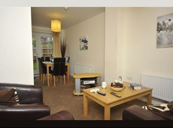 EasyRoommate UK -  room  close to waterfront and UCS, Ipswich - £380 pcm