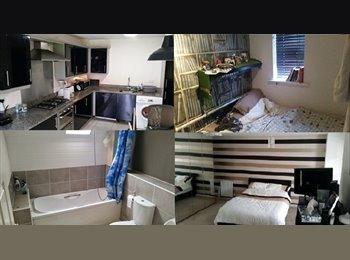 EasyRoommate UK - West Didsbury Double Room , Withington - £349 pcm