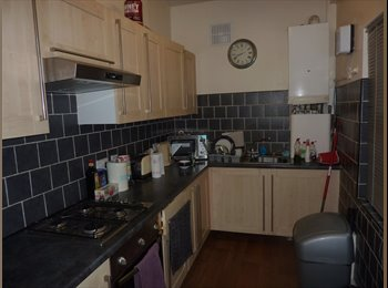EasyRoommate UK - rooms in central Chapel Allerton professional house share , Chapel Allerton - £400 pcm