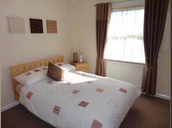 EasyRoommate UK - Serviced cleaned room + laundry - modern house share, Bedford - £495 pcm