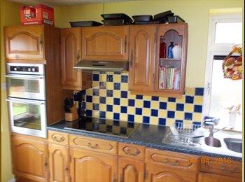 EasyRoommate UK - Double room  in quiet location, Arbury - £430 pcm