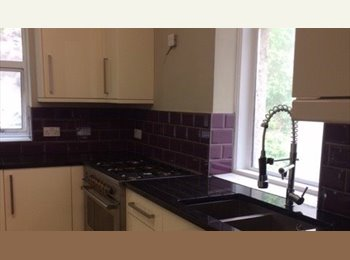 EasyRoommate UK - Rooms in recently renovated property, Torquay - £260 pcm