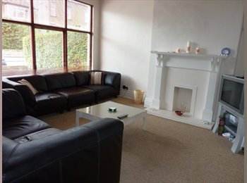 EasyRoommate UK - QUALITY SHARED PROFESSIONAL ACCOMODATION, Roundhay - £350 pcm