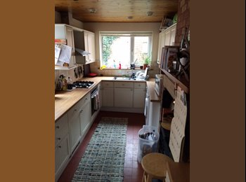 EasyRoommate UK - Gorgeous House in West End has a double room for rent now..., Lincoln - £350 pcm