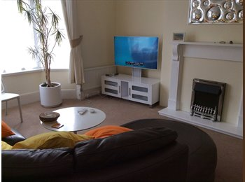 EasyRoommate UK - Lovely single room, close to town but very quiet, Torquay - £303 pcm