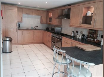 EasyRoommate UK - Lovely Furnished Double Room With En-suite, Castle - £400 pcm