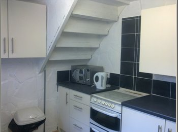 EasyRoommate UK - Lovely room in a lovely flat, Heaton - £300 pcm