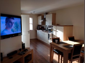 EasyRoommate UK - Double room to rent near town centre - all bills inc , Ipswich - £450 pcm