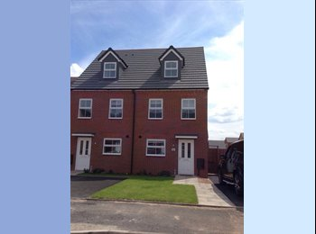EasyRoommate UK -  White Willow Park 4-bed new house for Warwick University Students, Lime Tree Park - £430 pcm