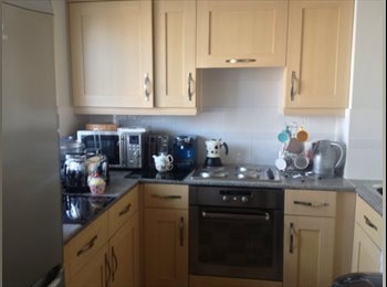 EasyRoommate UK - immaculate single room and the use of the entire flat , Ipswich - £475 pcm