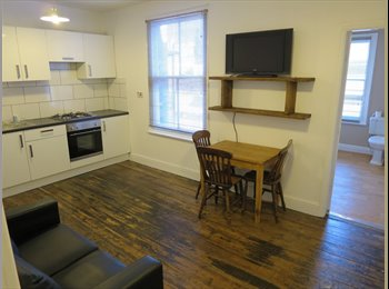 EasyRoommate UK - Bright attic room in newly refurbed flat, Chancet Wood - £312 pcm