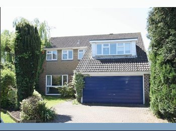 EasyRoommate UK - A Single & Double rooms in a quiet area of Holyport, Maidenhead, Maidenhead - £600 pcm