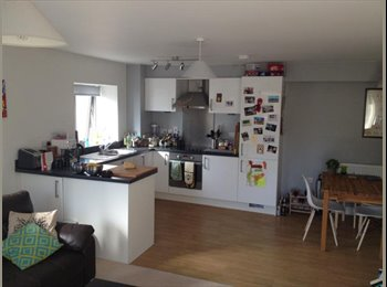 EasyRoommate UK - Double room in stunning modern flat in Oldfield Park / Southdown area, Bath - £437 pcm
