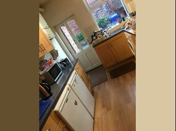 EasyRoommate UK - Room in spacious shared house , Norton Hammer - £300 pcm