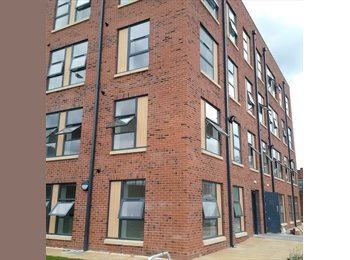 EasyRoommate UK - Newly built flats in S2 for just £450pcm inc all bills!! , Lowfield - £450 pcm