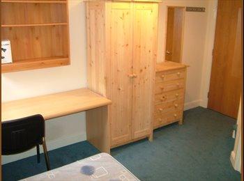 EasyRoommate UK - FANTASTIC LOCATION - STUDENT EN SUITE ROOM, Netherthorpe - £377 pcm