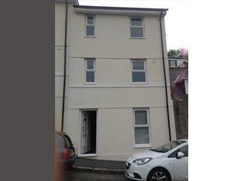 EasyRoommate UK - Double room in beautifully presented home, Torquay - £450 pcm