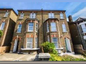 EasyRoommate UK - three single rooms in  garden flat, Catford - £1,300 pcm