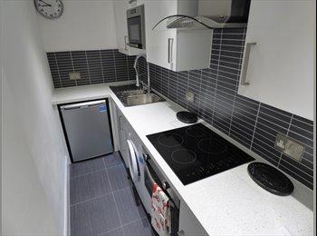 EasyRoommate UK - Stunning Rooms In Edinburgh, Leith  - £550 pcm