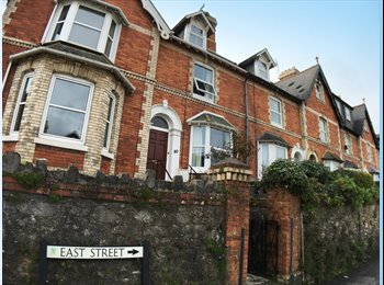 EasyRoommate UK - 4 Bedroom Victorian Home Situated in Close Proximity to Newton Abbot Town and Local Transport Links, Newton Abbot - £477 pcm