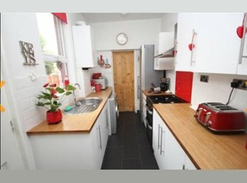 EasyRoommate UK - Studi flat/annex available to rent with large double bedroom, Whitley - £600 pcm