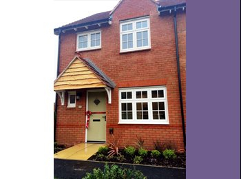 EasyRoommate UK - DOUBLE ROOM WITH OWN BATHROOM IN NEW Ho, Newton Abbot - £500 pcm