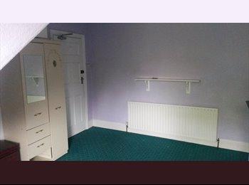 EasyRoommate UK - Bright room in lovely friendly Victorian Stoneygate Villa, Stoneygate - £350 pcm