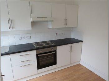 EasyRoommate UK - NEWLY REFURBISHED 12 BEDROOM HOUSE WITH EN-SUITES, Torquay - £433 pcm