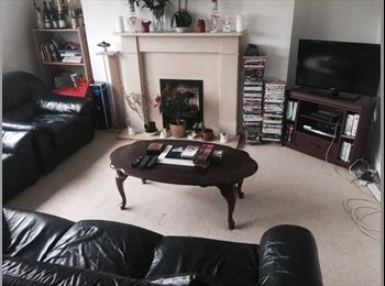 EasyRoommate UK - Double Room in East Finchley, Hampstead Garden Suburb - £520 pcm