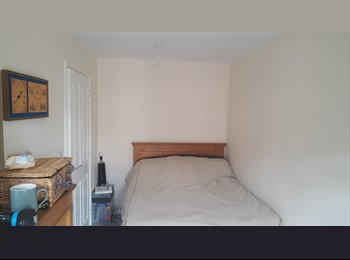 EasyRoommate UK - Double room in trendy house available, Botanic - £300 pcm