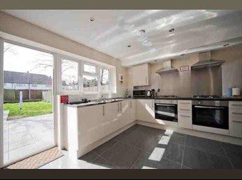 EasyRoommate UK - Top quality shared accommodation in Barkingside, Barkingside - £700 pcm
