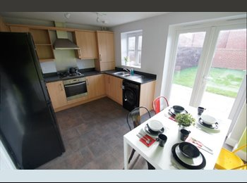 EasyRoommate UK - Summer Accommodation, May to Sept, Coventry, Stoke Aldermoor - £400 pcm